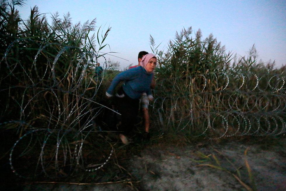 5H15 - Le passeur serbe coupe la clôture, les réfugiés passent en Hongrie en silence, mais dans un état d'excitation palpable.