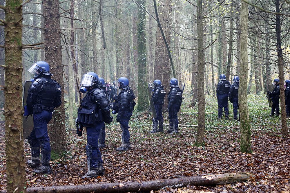 L'opération Cesar a commencé. des centaines de CRS investissent les bois le 24 novembre 2012. Il tentent de former des cordons pour faire reculer n'apporte qui voudrait rentrer un peu plus dans les bois.